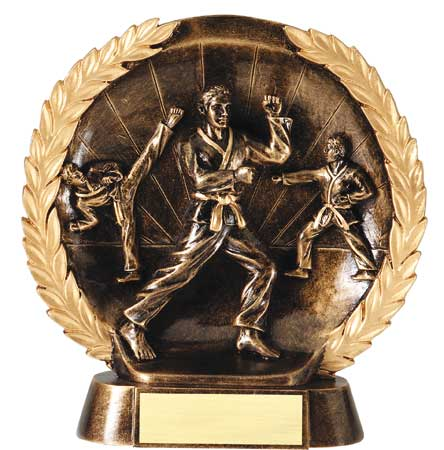 Male Karate Plate Resin Trophy